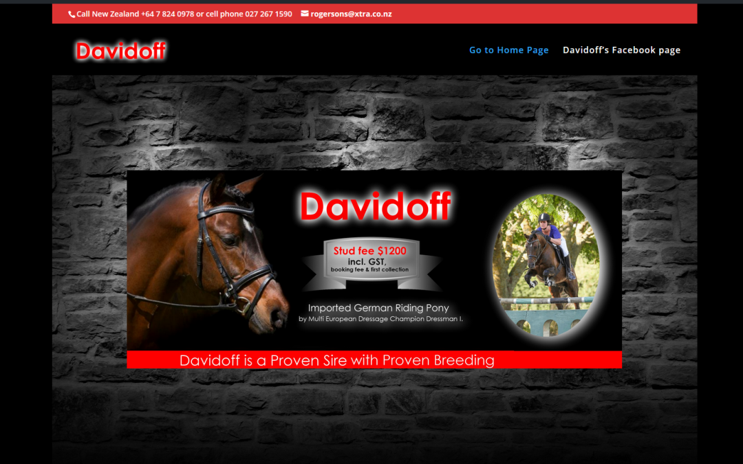 New equine website design